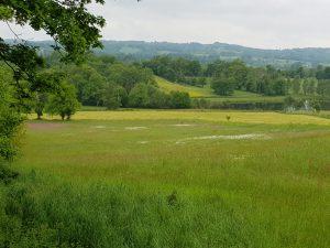 field montredon