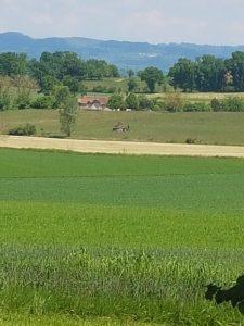 near Beduer